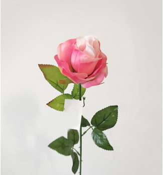 Роза в полубутоне