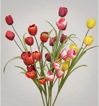 Тюльпаны ветка, 6 головок